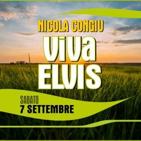 Viva ELVIS! 70 MUSICISTI sul PALCO